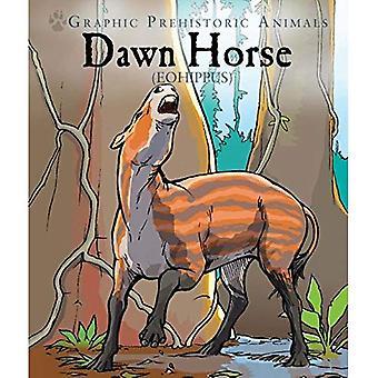 Cavallo di Dawn: Eohippus