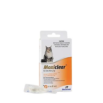 MOXICLEAR Katze > 4kg 6pk Orange