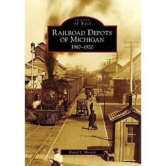 Railroad Depots of Michigan - 1910-1920 by David J Mrozek - 9780738551