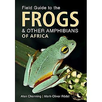 Field Guide to Frogs and Other Amfibieën of Africa (Field Guide series)