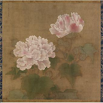 Li Di - Red and White Cotton Roses Poster Print Giclee