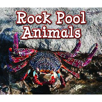 Rock Pool Animals by Sian Smith - 9781406280692 Book