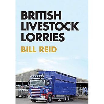 Camion di bestiame britannico
