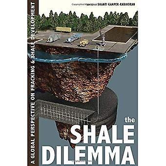El dilema de la pizarra: Una perspectiva Global sobre fracturamiento hidráulico y el desarrollo de la pizarra (historia del entorno urbano)