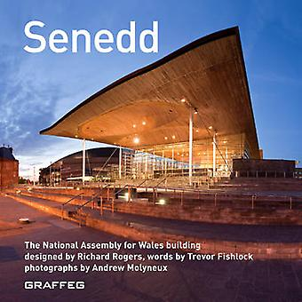 Senedd - The National Assembly for Wales Building Designed by Richard