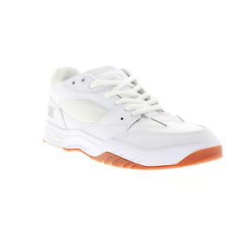 DC Maswell mens vitt läder & mesh Athletic skate skor