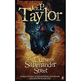Shadowmancer: La maldición de la calle de Salamandra