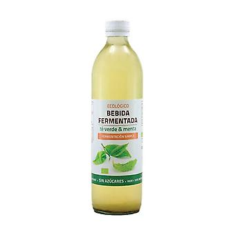 Green Tea and Mint Fermented Drink 500 ml