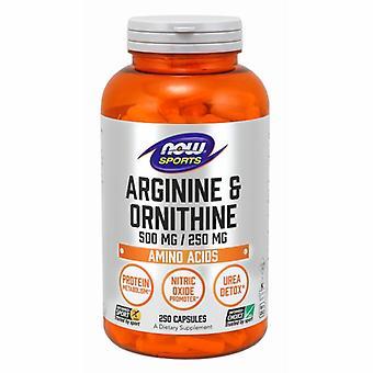 Now Foods Arginine & Ornithine, 250 Caps