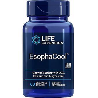 Estensione di vita EsophaCool Chew Tabs 60