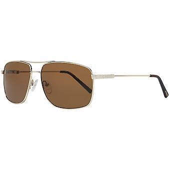 Gissa solglasögon gf0205 5932e