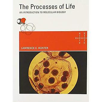 Les processus de la vie: une Introduction à la biologie moléculaire
