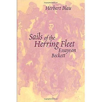 Segel der Hering-Flotte: Essays über Beckett
