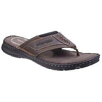 Sandalias de cuero de Darwyn Rockport hombre