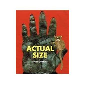 Actual Size by Steve Jenkins - 9781613830932 Book