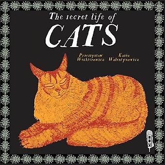 The Secret Lives of Cats by Przemyslaw Wechterowicz - 9781912537839 B