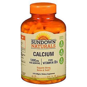 Sundown Naturals Kalsium plus D3-vitamiini Softgels, 1200 mg, 170 Softgels