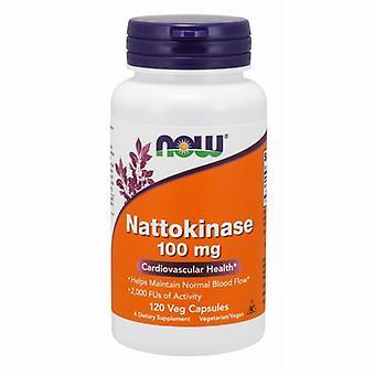 الآن الأطعمة Nattokinase، 100 ملغ، 120 Vcaps