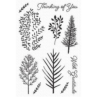 Mes choses préférées Clairement Sentimental Stamps 4 «X6» - Wonderful Woods