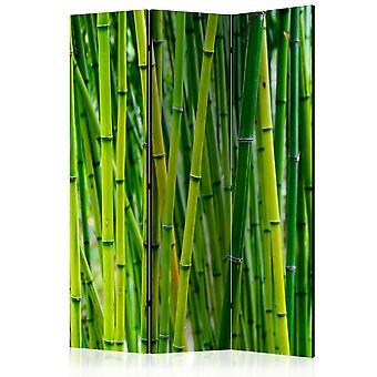 3-teiliges Paravent - Bamboo Forest [Room Dividers]