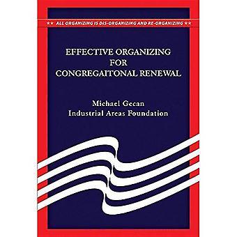 Organizzazione efficace per il rinnovamento della Congregazione