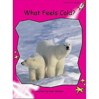 Rode raket lezers: Opkomende Non-fictie instellen A: wat voelt koud? Big Book Edition
