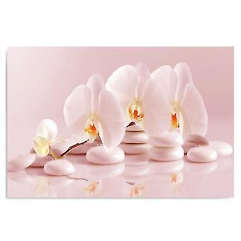 Canvas, foto op doek, orchideeën ZEN