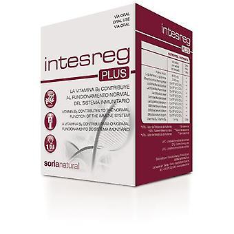 Soria Natural Regeneración del intestino
