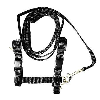 Adjustable harness and leash for cat