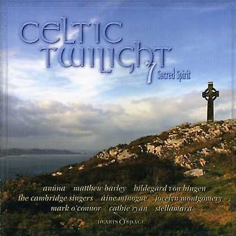 Celtic Twilight - Celtic Twilight: Vol. 7-Sacred Spirit [CD] USA import