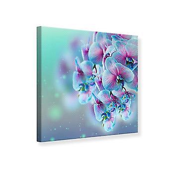 Canvas Print gekleurde orchideeën