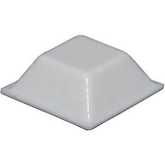 TOOLCRAFT PD2205W Ayak kendinden yapışkanlı, kare Beyaz (L x W x H) 20,5 x 20,5 x 7,5 mm 1 adet(ler)