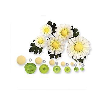 JEM Daisy Flower Centre Sellos De saques de relieve Conjunto de cortadores de 6