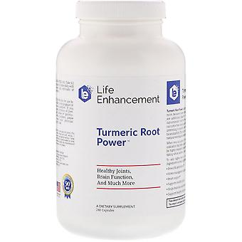 Life Enhancement, Turmeric Root Power, 240 Capsules