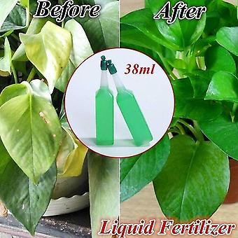 Hydroponic Plant Nutrient Fertilizer Solution - Potted Green Concentrated