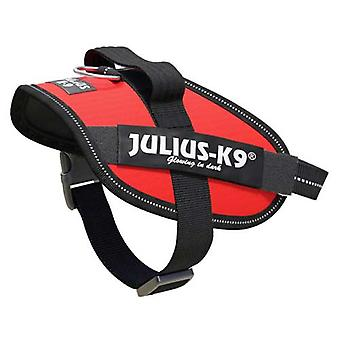 Julius-K9 IDC-Powerharness لحجم ال كلاب: ميني ميني، أحمر
