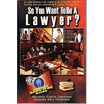 So You Want to Be a Lawyer?: A Guide to Success in the Legal Profession