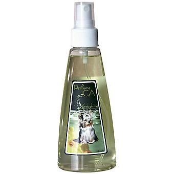 Ica Perfume Ica Yorkshire 150ml (Dogs , Grooming & Wellbeing , Cologne)