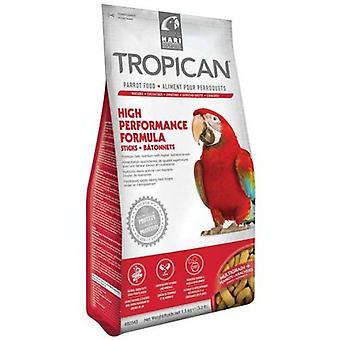 Tropican High Energy Sticks for Parrots (Birds , Bird Food)