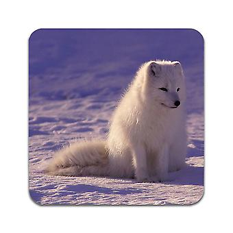 2 ST Wolf Cub Coasters