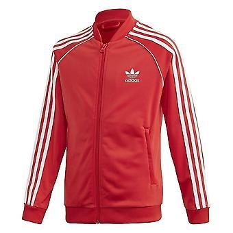 Adidas Superstar Top FM5662 καθολική όλο το χρόνο μπλούζες αγόρι