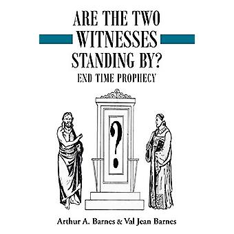 Are the Two Witnesses Standing By? by Arthur a Barnes - 9781489704337