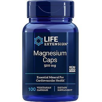 Extensão de Vida Magnésio 500mg Vegicaps 100