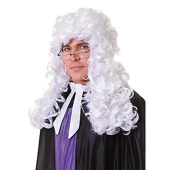 Peruka sędziego.  Budżetu. Biały.