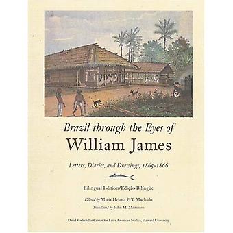 Brasil om øynene til William James: dagbøker, bokstaver og tegninger, 1865-1866 (David Rockefeller senter for Latin American Studies)