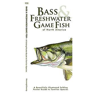 Bass & poisson d'eau douce: Un pliant Pocket Guide to populaires espèces nord-américaines (Pocket Guide naturaliste série)