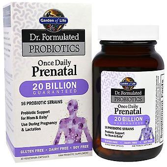 Garden of Life Dr. Form Probiotika einmal täglich Pränatal 30 vegetarische Kapseln