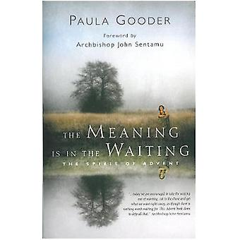 The Meaning is in the Waiting  The Spirit of Advent by Paula Gooder