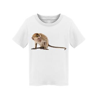 Macaque, klar for foto tee toddler's -Bilde av Shutterstock