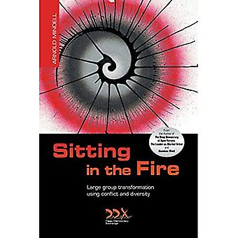Sitting in the Fire: Large� Group Transformation Using Conflict and Diversity
